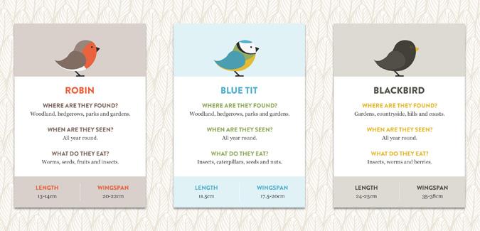 british songbirds - info cards
