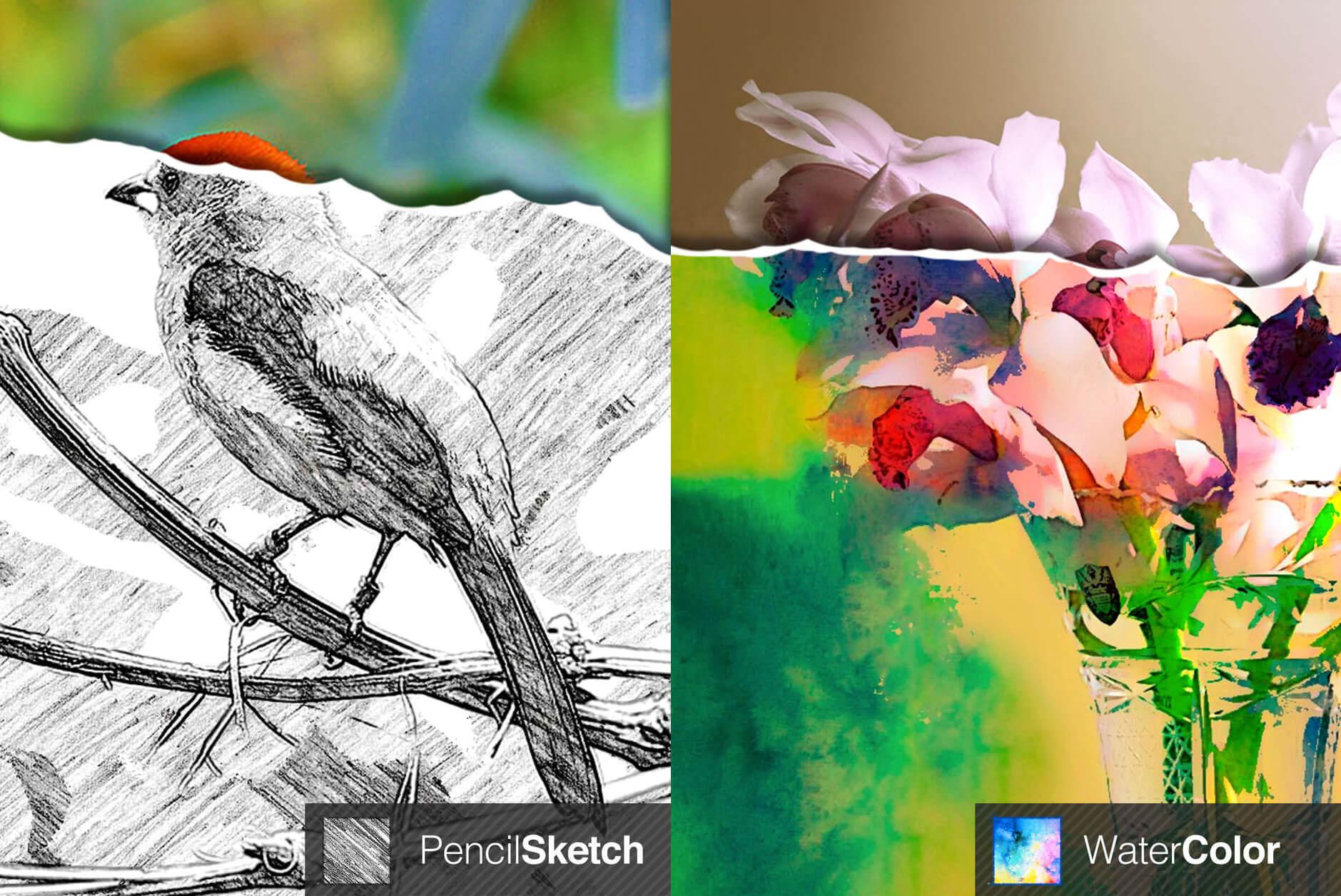 turn photos into paintings app